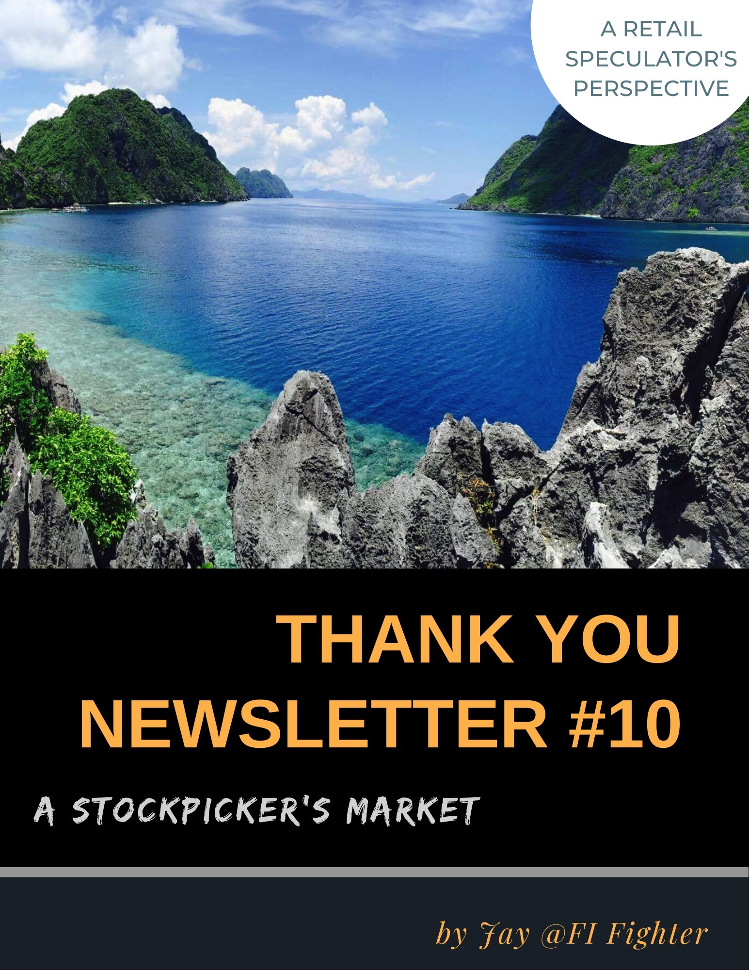 Thank You Newsletter #10 – A Stockpicker's Market (Released)